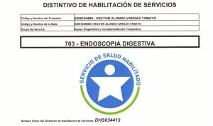 Habilitacion endoscopia